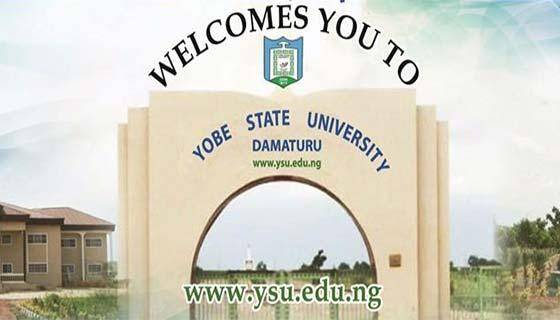 YSU Postgraduate Admission, 2019/2020 Announced